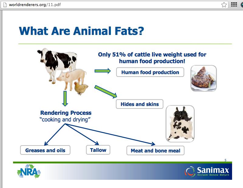 Animal Food Production In Australoa