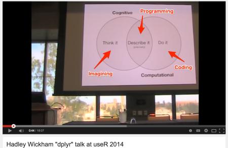 Hadley_Wickham_programming_ann