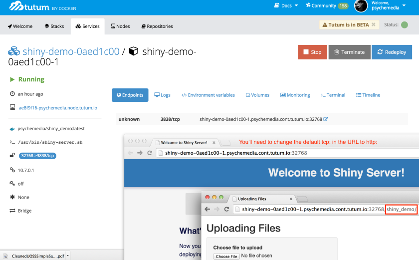Uploading_Files_and_Welcome_to_Shiny_Server__and_shiny-demo-0aed1c00-1___Tutum